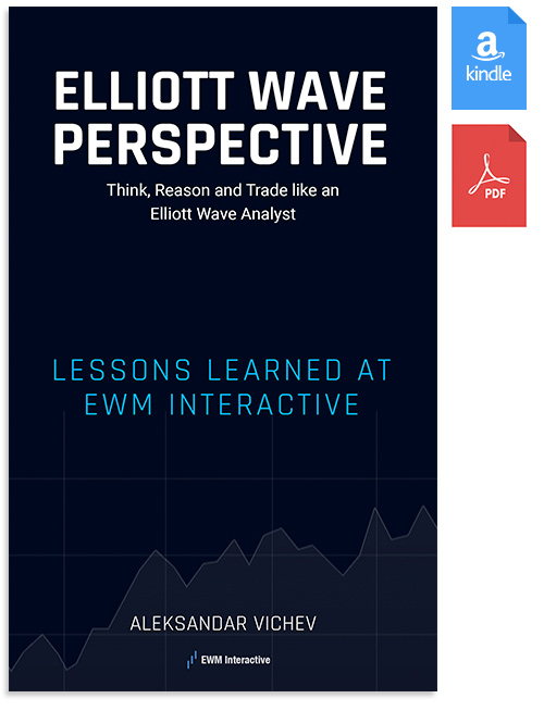 elliott wave perspective cover